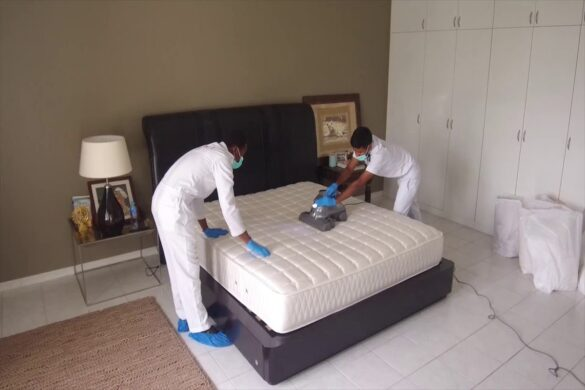mattress sanitizing