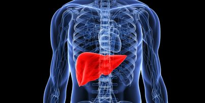 Liver Diseases: 6 Things That Can Hurt Your Liver Health