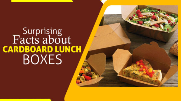 Surprising Facts About Cardboard Lunch Boxes